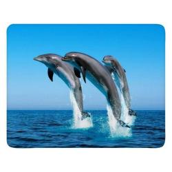 "Коврик для мыши BURO пластиковый  ""дельфин"" 230х180х2 мм (BU-M40083)"