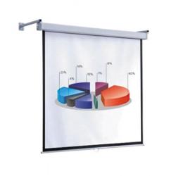 Экран настенный Economy 180x180