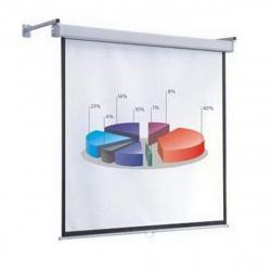 Экран настенный Economy 153x203