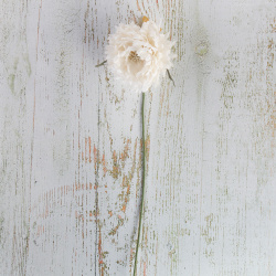 Украшение Цветок 35см пластик/текстиль ЛЬДИНКА 210044 белый
