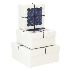 Набор подарочных коробок Summer Mood 3шт, 21,5*21,5*10-15,5*15,5*7,5см, белый КОКОС 212929