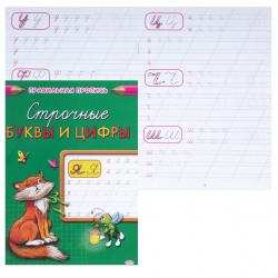 Прописи А5, 8л Строчные буквы и цифры Правильная пропись Проф-Пресс ПР-2999