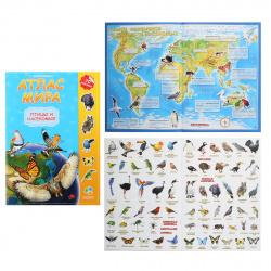Книжка А4 8л Геодом Атлас мира Птицы и насекомые с наклейками