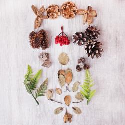 Набор природного декора ЛЬДИНКА Венок (шишки, ягоды, веточки, листья) 201380 ассорти