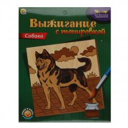 Набор для выжигания с тонировкой Рыжий кот Собака НР-9680