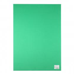 Фоамиран 50*70см 1мм 1л КОКОС 183713/Y122 зеленый