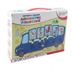 Игра развивающая Рыжий кот Автобус знаний Домашние животные ИН-7639