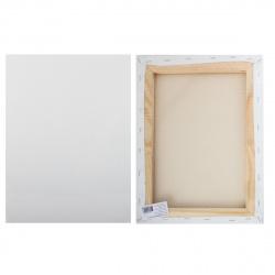 Холст на подрамнике, прямоугольная, 30*40см, 100% хлопок, среднее зерно Pinax 20.3040