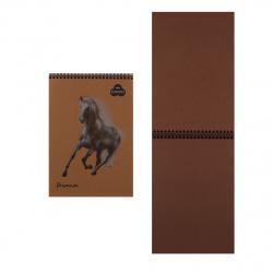 Блокнот для пастели А4 (210*297) 30л 160г/м2 дв спир Лилия Холдинг Premium Cinnamon БРr4/С корица