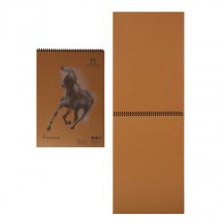 Блокнот для пастели А3 (300*420) 30л 160г/м2 дв спир Лилия Холдинг Premium Cinnamon БРr3/С корица