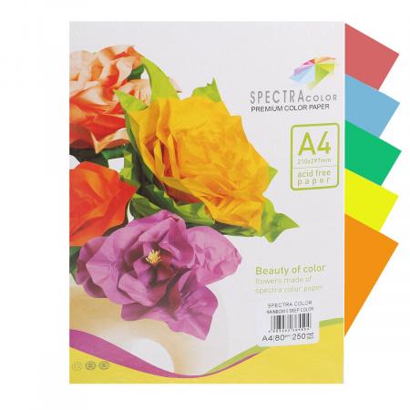 Бумага цветная А4 80г/м2 250л 5 цветов Spectra Color №82А