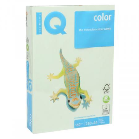 Бумага цветная А4 160г/м 250л IQ Color 00-00000561/65167 27 св зел