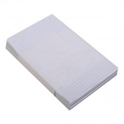 Блок для записей 100*160мм, листовой, не склеенный, белый, клетка Полином 5с3