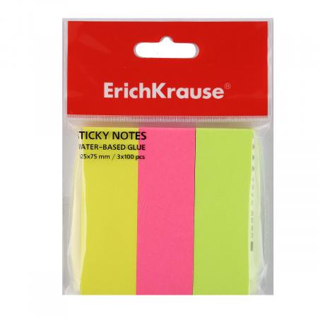 Закладки клейкие бумажные 25*75 3цв*100 Erich Krause 37174