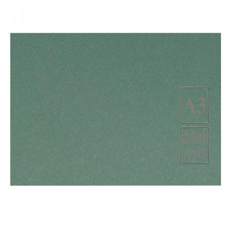 Ватман цвет тонир А3 297*420 200г/м Лилия Холдинг (50л) зелен/светло-зелен
