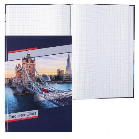 Книга учета 80л, А4, 205*300мм, клетка, офсет, твердый картон 7Бц Лондонский мост Проф-Пресс 80-1734