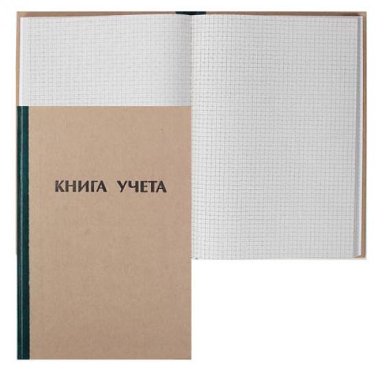 Книга учета 96л, А4, 190*290мм, клетка, газетка Ульяновский Дом Печати КУ-111