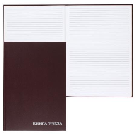 Книга учета 96л, А4, 200*290мм, пустографка, офсет, твердый картон 7Бц, бумвинил Ульяновский Дом Печати 2056427