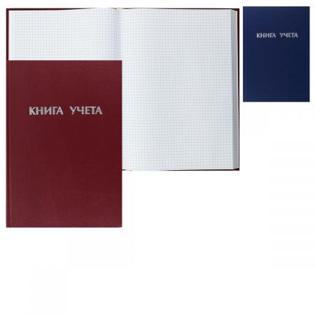 Книга учета 192л А4 (200*290) клетка офсет твердая обложка бумвинил 2056431/КУ-561 ассорти