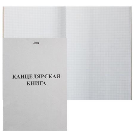 Книга учета канцелярская 48л А4 (205*295) клетка офсет обложка мелованный картон 48Т4В3_03963