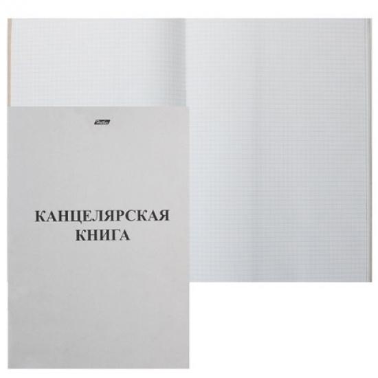 Книга учета 48л, А4, 205*295мм, клетка, офсет Hatber 48Т4B3_03963