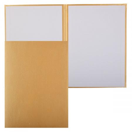 Папка адресная без тиснения А4 балакрон атлас пухлая Имидж ПМ4000-171 золото