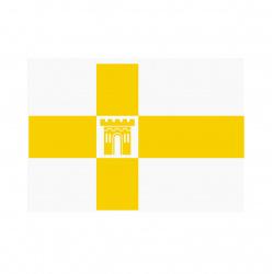 Флаг Ставрополя города Ставрополя, 1000*1500мм, полиэфир, для помещений и улицы, без подставки и флагштока