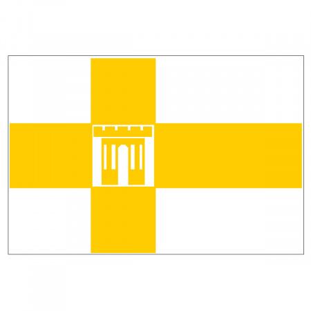 Флаг Ставрополя флажный трикотаж 1,0*1,5м для улицы и помещений