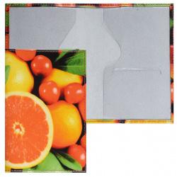 Обложка для паспорта кожа Grand 02-006-154