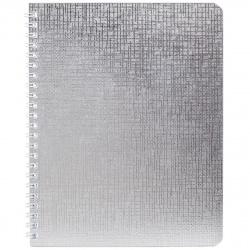 Тетрадь 48л клетка дв спир Hatber Metallic Серебро б/в тисн перф 48Т5бвВ1гр