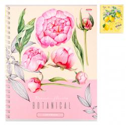 Тетрадь А5, 48л, клетка, на евроспирали Цветы и цитрусы Проф-Пресс 48-4526