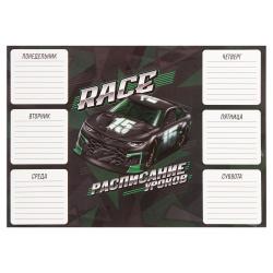 Расписание уроков А4 Феникс Авокадо-котики выб лак 52276