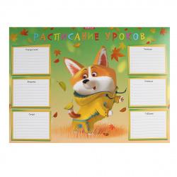 Расписание уроков 297*410мм, картон мелованный Корги Erich Krause 53169