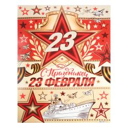 Плакат С праздником! 23 Февраля Мир открыток 499*691 мелов карт 0-02-23022А