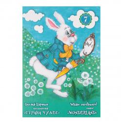 Набор белого картона А4 7л мелованный в папке Страна чудес Лилия Холдинг НБК-0205