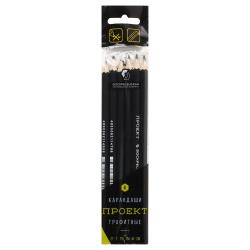 Набор карандашей 6шт, ассорти, дерево, шестигранный, пакет Воскресенская карандашная фабрика 6Р-4010