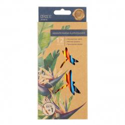 Карандаши цветные акварельные 12 цветов, дерево, трехгранный, крафт First ERGO First КОКОС 205876