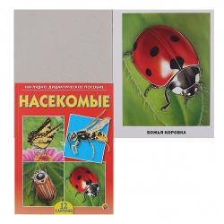 Развивающие карточки 12шт Рыжий кот Насекомые ПД-6899