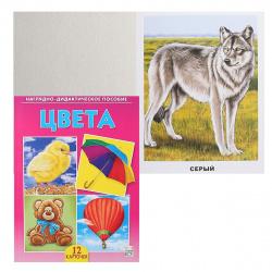 Развивающие карточки 12шт Рыжий кот Цвета ПД-6874