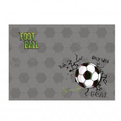 Клеенка для уроков труда 50*70 Футбол КОКОС 205689