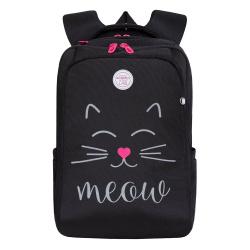 Рюкзак нейлон эргономичная спинка 2 отделения 28*38*16 Grizzly RG-966-2 черный