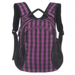 Рюкзак полиэстер, спинка эргономичная, 2 отделения, 280*350*180мм, черный/фиолетовый Grizzly RD-640-1